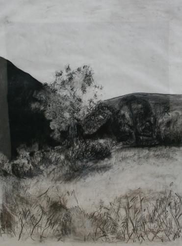 l'œuvre de la semaine,1996,fusain,pastel,papier,paysage,corse