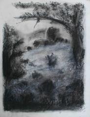 yves juhel,art,peintre,peinture,série,rétrospective,papier,fusain,sanguine,craie blanche,1996,paysage,arbre,corse
