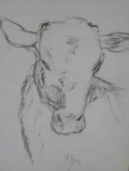yves juhel,art,peintre,peinture,rétrospective,2002,gouache,papier,animaux,série